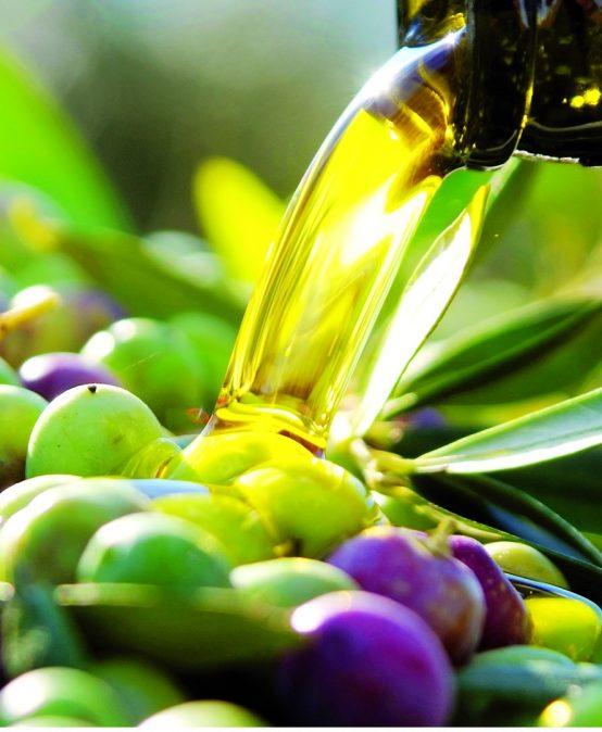 Obtención de aceites de oliva