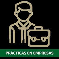 Prácticas en empresas