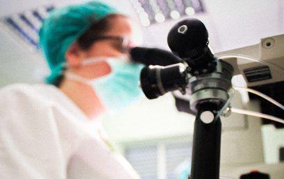 Ensayos microbiológicos y biotecnológicos