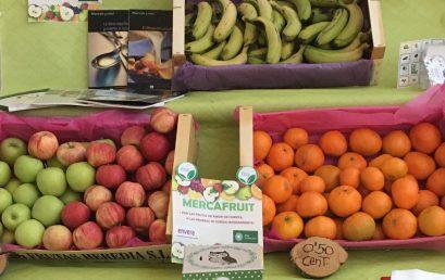 Mercafruit y Ecoclean