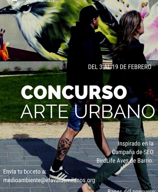Concurso Arte Urbano EFA Valdemilanos