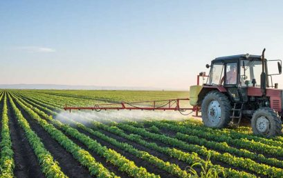 FORMACIÓN PROFESIONAL, EMPRENDIMIENTO Y EMPLEO EN EL SECTOR AGROALIMENTARIO (II)