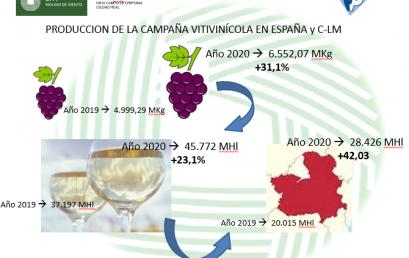 Técnicas de mejora y tratamientos de vinos en EFA Molino de Viento