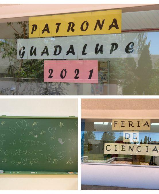 Fiesta Patrona Guadalupe EFA VALDEMILANOS 2021